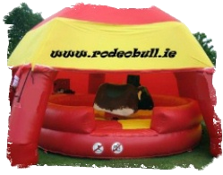 Irish Rodeo Bull with shelter, for Hire